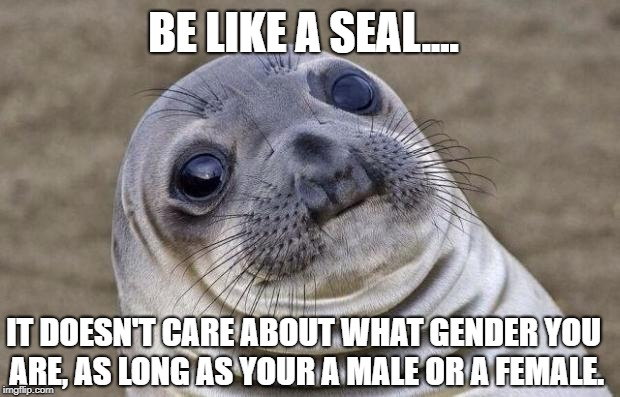 Ah, I love Dogs......... | BE LIKE A SEAL.... IT DOESN'T CARE ABOUT WHAT GENDER YOU ARE, AS LONG AS YOUR A MALE OR A FEMALE. | image tagged in memes,awkward moment sealion | made w/ Imgflip meme maker