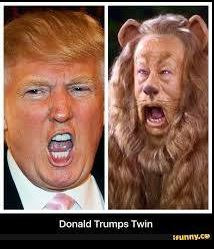 image tagged in trump cowardly lion | made w/ Imgflip meme maker
