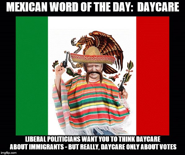 Trumps Mexican Words | MEXICAN WORD OF THE DAY:  DAYCARE LIBERAL POLITICIANS WANT YOU TO THINK DAYCARE ABOUT IMMIGRANTS - BUT REALLY, DAYCARE ONLY ABOUT VOTES | image tagged in trump,mexican word of the day,liberals,immigration | made w/ Imgflip meme maker