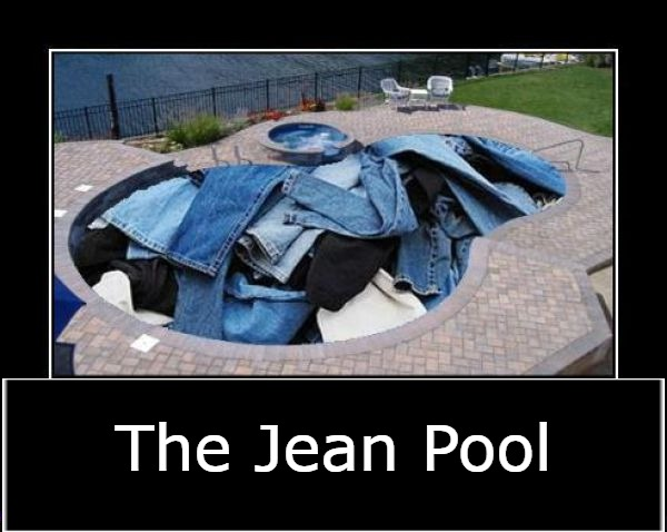 The Jean Pool | image tagged in jeans,genes,pool,humor,homonyms | made w/ Imgflip meme maker