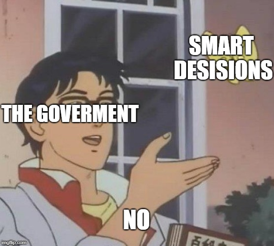 Is This A Pigeon Meme | THE GOVERMENT SMART DESISIONS NO | image tagged in memes,is this a pigeon | made w/ Imgflip meme maker