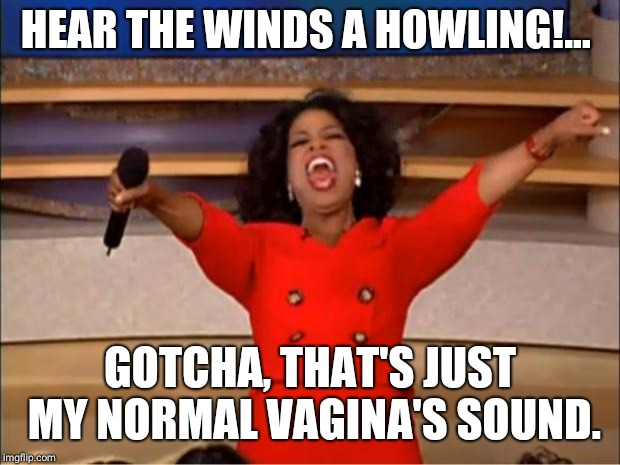 Oprah You Get A Meme | HEAR THE WINDS A HOWLING!... GOTCHA, THAT'S JUST MY NORMAL VA**NA'S SOUND. | image tagged in memes,oprah you get a | made w/ Imgflip meme maker