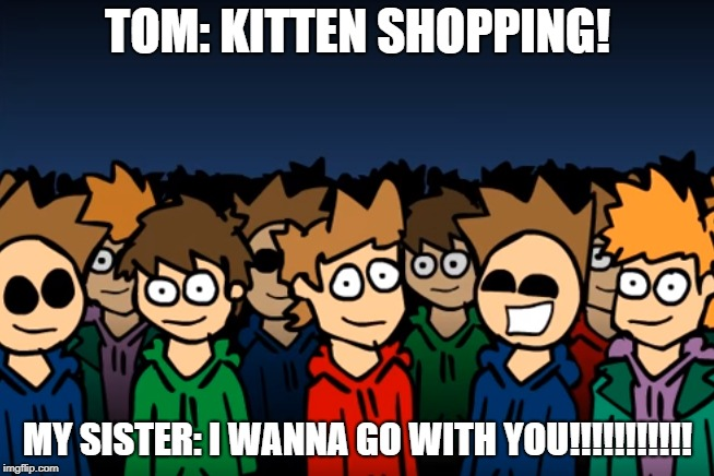 My Sister Would Agree With Tom | TOM: KITTEN SHOPPING! MY SISTER: I WANNA GO WITH YOU!!!!!!!!!!! | image tagged in eddsworld,kittens | made w/ Imgflip meme maker