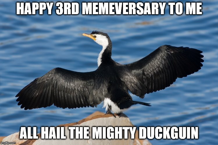 Duckguin | HAPPY 3RD MEMEVERSARY TO ME ALL HAIL THE MIGHTY DUCKGUIN | image tagged in duckguin | made w/ Imgflip meme maker