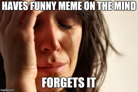 First World Problems Meme | HAVES FUNNY MEME ON THE MIND FORGETS IT | image tagged in memes,first world problems | made w/ Imgflip meme maker