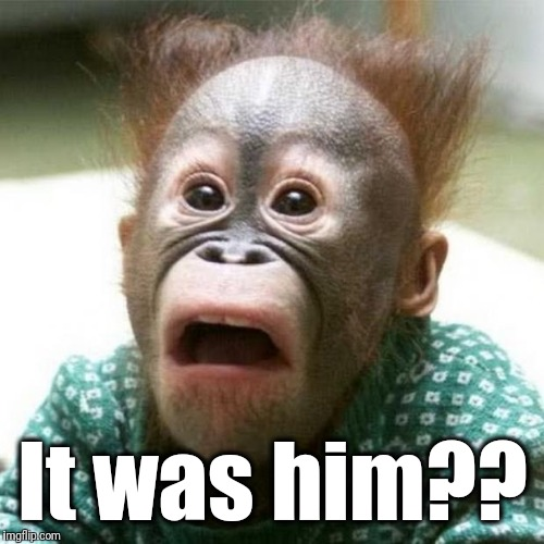 Shocked Monkey | It was him?? | image tagged in shocked monkey | made w/ Imgflip meme maker