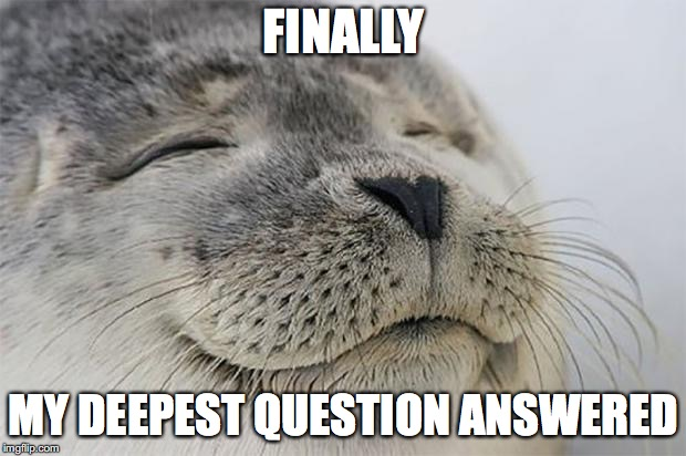 Satisfied Seal Meme | FINALLY MY DEEPEST QUESTION ANSWERED | image tagged in memes,satisfied seal | made w/ Imgflip meme maker