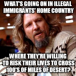 Confused Lebowski Meme | WHAT'S GOING ON IN ILLEGAL IMMIGRANTS' HOME COUNTRY WHERE THEY'RE WILLING TO RISK THEIR LIVES TO CROSS 100'S OF MILES OF DESERT? | image tagged in memes,confused lebowski | made w/ Imgflip meme maker