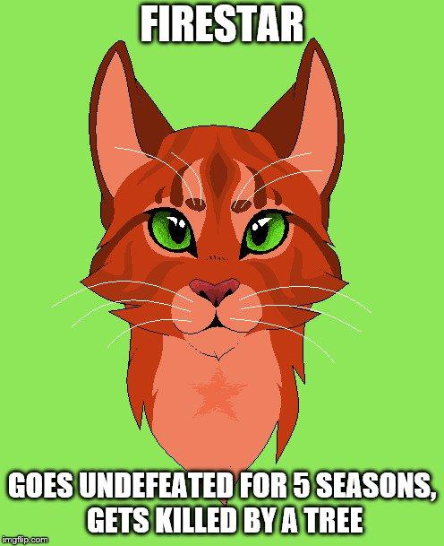 warrior cats Memes & GIFs - Imgflip