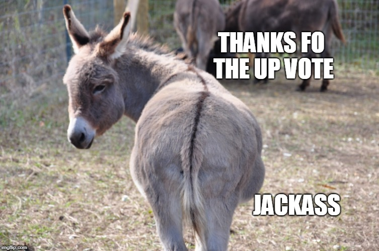 THANKS FO THE UP VOTE JACKASS | made w/ Imgflip meme maker