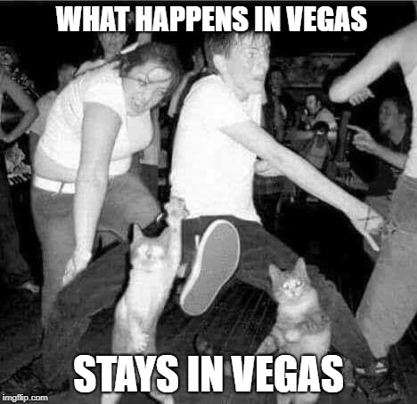 Vegas | WHAT HAPPENS IN VEGAS STAYS IN VEGAS | image tagged in las vegas,funny cats,puppies and kittens,donald trump,family | made w/ Imgflip meme maker