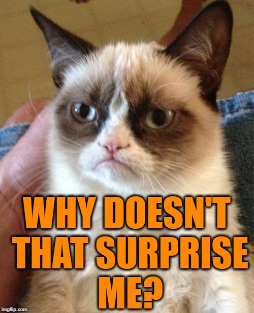 Grumpy Cat Meme | WHY DOESN'T THAT SURPRISE ME? | image tagged in memes,grumpy cat | made w/ Imgflip meme maker