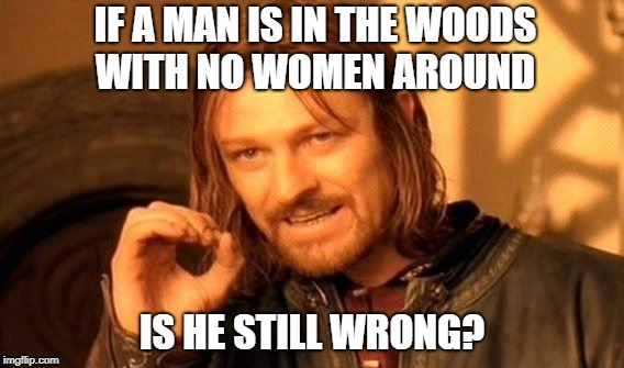 One Does Not Simply Meme | IF A MAN IS IN THE WOODS WITH NO WOMEN AROUND IS HE STILL WRONG? | image tagged in memes,one does not simply | made w/ Imgflip meme maker