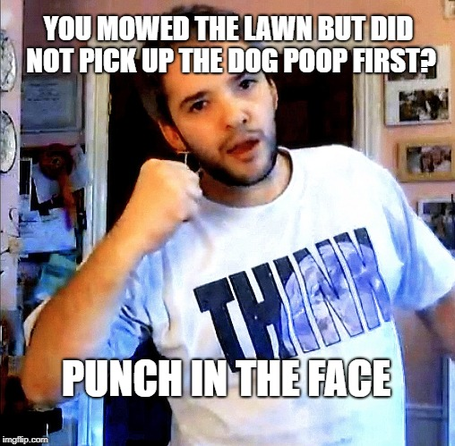 A TeaInTheMoment request | YOU MOWED THE LAWN BUT DID NOT PICK UP THE DOG POOP FIRST? PUNCH IN THE FACE | image tagged in punch in the face phil,dog poop,poop,oh shit,lawn,mowing | made w/ Imgflip meme maker