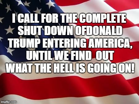 American flag | I CALL FOR THE COMPLETE SHUT DOWN OFDONALD TRUMP ENTERING AMERICA, UNTIL WE FIND  OUT WHAT THE HELL IS GOING ON! | image tagged in american flag | made w/ Imgflip meme maker