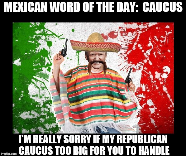 Trumps Mexican Words | MEXICAN WORD OF THE DAY:  CAUCUS I'M REALLY SORRY IF MY REPUBLICAN CAUCUS TOO BIG FOR YOU TO HANDLE | image tagged in trump,republican,cock | made w/ Imgflip meme maker