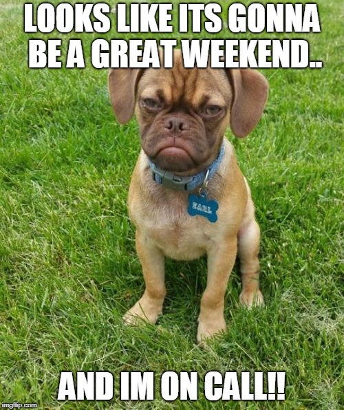 Grumpy Puppy Earl | LOOKS LIKE ITS GONNA BE A GREAT WEEKEND.. AND IM ON CALL!! | image tagged in grumpy puppy earl | made w/ Imgflip meme maker