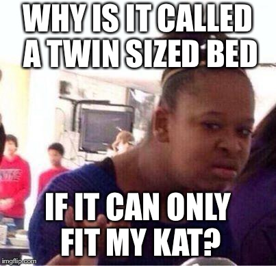 Wut? | WHY IS IT CALLED A TWIN SIZED BED IF IT CAN ONLY FIT MY KAT? | image tagged in wut | made w/ Imgflip meme maker