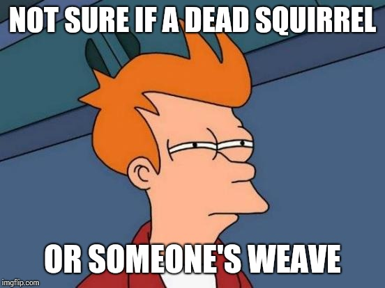 When you're driving through the hood and you see something furry laying in the street. | NOT SURE IF A DEAD SQUIRREL OR SOMEONE'S WEAVE | image tagged in memes,futurama fry | made w/ Imgflip meme maker