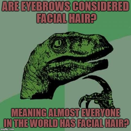 Philosoraptor Meme | ARE EYEBROWS CONSIDERED FACIAL HAIR? MEANING ALMOST EVERYONE IN THE WORLD HAS FACIAL HAIR? | image tagged in memes,philosoraptor | made w/ Imgflip meme maker