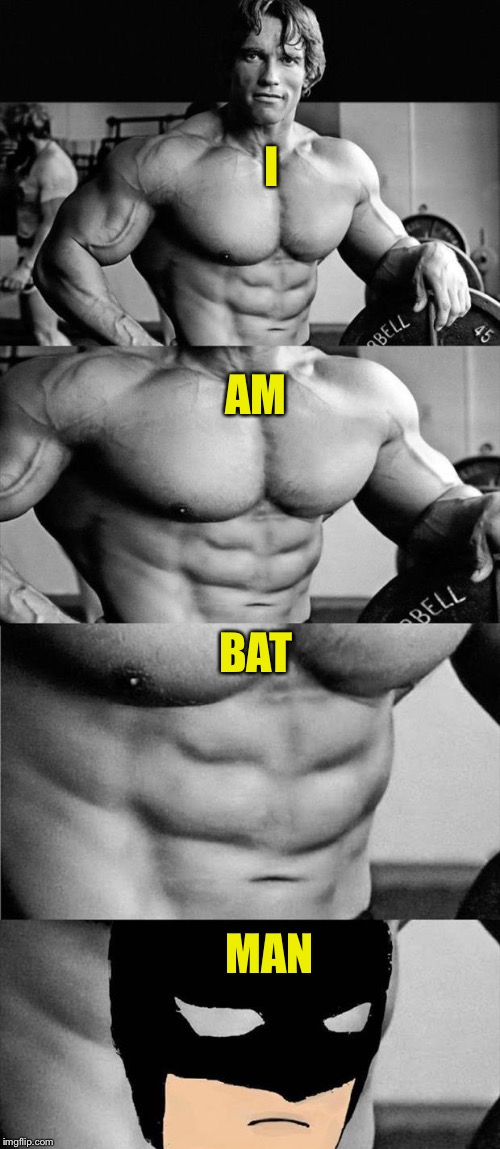 Who knew? | I AM BAT MAN | image tagged in arnold schwarzenegger,batman,memes,funny | made w/ Imgflip meme maker