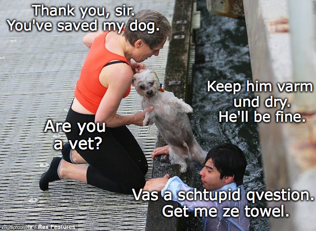 When you're a tourist in Germany | Thank you, sir. You've saved my dog. Keep him varm und dry. He'll be fine. Are you a vet? Vas a schtupid qvestion. Get me ze towel. | image tagged in germany,animal rescue,dog,funny memes,bad pun | made w/ Imgflip meme maker