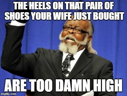 Too Damn High Meme | THE HEELS ON THAT PAIR OF SHOES YOUR WIFE JUST BOUGHT ARE TOO DAMN HIGH | image tagged in memes,too damn high | made w/ Imgflip meme maker