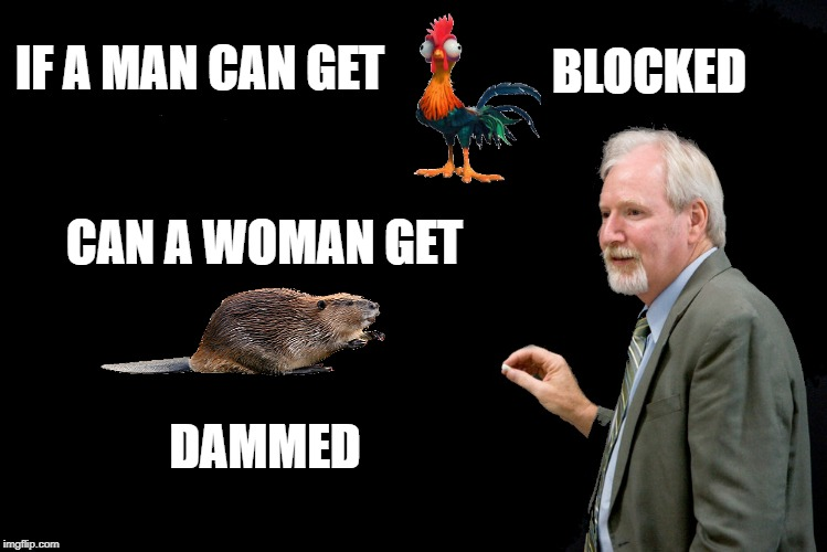 beaver dammed | IF A MAN CAN GET BLOCKED CAN A WOMAN GET DAMMED | image tagged in beaver,dam,funny | made w/ Imgflip meme maker