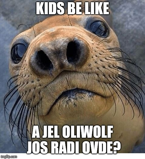KIDS BE LIKE A JEL OLIWOLF JOS RADI OVDE? | image tagged in ksksk | made w/ Imgflip meme maker