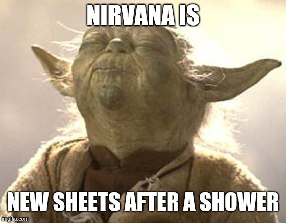 NIRVANA IS NEW SHEETS AFTER A SHOWER | image tagged in yoda pleasure | made w/ Imgflip meme maker