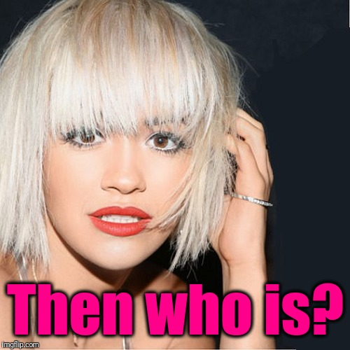 ditz | Then who is? | image tagged in ditz | made w/ Imgflip meme maker