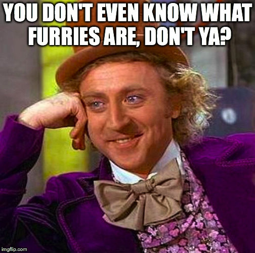 Creepy Condescending Wonka Meme | YOU DON'T EVEN KNOW WHAT FURRIES ARE, DON'T YA? | image tagged in memes,creepy condescending wonka | made w/ Imgflip meme maker