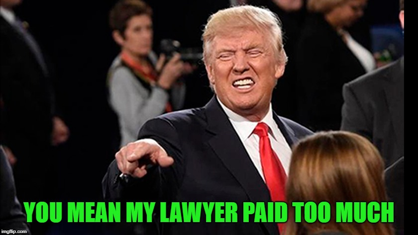 YOU MEAN MY LAWYER PAID TOO MUCH | made w/ Imgflip meme maker