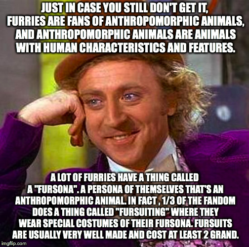 Creepy Condescending Wonka Meme | JUST IN CASE YOU STILL DON'T GET IT, FURRIES ARE FANS OF ANTHROPOMORPHIC ANIMALS, AND ANTHROPOMORPHIC ANIMALS ARE ANIMALS WITH HUMAN CHARACT | image tagged in memes,creepy condescending wonka | made w/ Imgflip meme maker