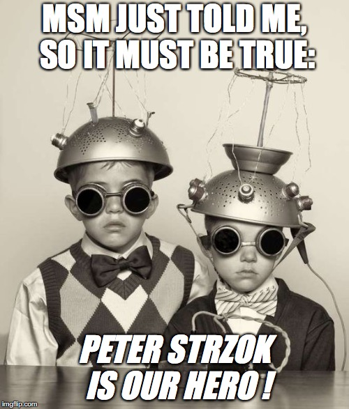 MSM JUST TOLD ME, SO IT MUST BE TRUE: PETER STRZOK IS OUR HERO ! | image tagged in collanderkidz | made w/ Imgflip meme maker