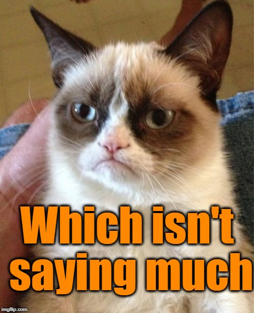Grumpy Cat Meme | Which isn't saying much | image tagged in memes,grumpy cat | made w/ Imgflip meme maker