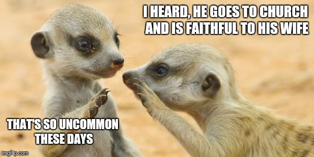 gossip meerkats | I HEARD, HE GOES TO CHURCH AND IS FAITHFUL TO HIS WIFE THAT'S SO UNCOMMON THESE DAYS | image tagged in gossip meerkats | made w/ Imgflip meme maker