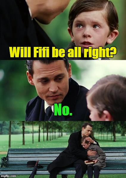 Finding Neverland Meme | Will Fifi be all right? No. | image tagged in memes,finding neverland | made w/ Imgflip meme maker