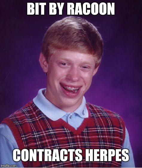 Bad Luck Brian Meme | BIT BY RACOON CONTRACTS HERPES | image tagged in memes,bad luck brian | made w/ Imgflip meme maker
