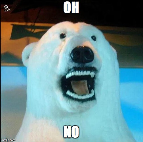 Horrified Polar Bear | OH NO | image tagged in horrified polar bear | made w/ Imgflip meme maker