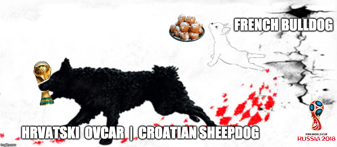 CROATIA WORLD CUP 2018 hrvatski  ovcar  | HRVATSKI  OVCAR  |  CROATIAN SHEEPDOG FRENCH BULLDOG | image tagged in croatia,world cup,france,russia,dogs | made w/ Imgflip meme maker