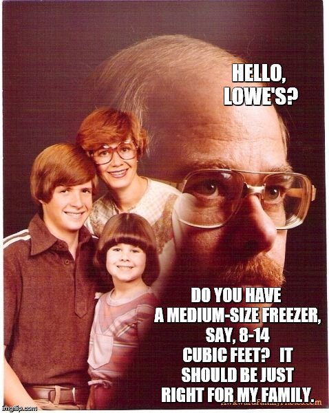 Vengeance Dad Meme | HELLO, LOWE'S? DO YOU HAVE A MEDIUM-SIZE FREEZER, SAY, 8-14 CUBIC FEET?   IT SHOULD BE JUST RIGHT FOR MY FAMILY. | image tagged in memes,vengeance dad | made w/ Imgflip meme maker