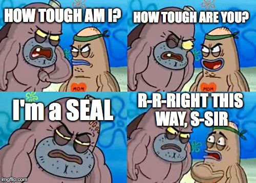 I'd be scared too... | HOW TOUGH AM I? HOW TOUGH ARE YOU? I'm a SEAL R-R-RIGHT THIS WAY, S-SIR | image tagged in memes,how tough are you,navy seals,spongebob | made w/ Imgflip meme maker