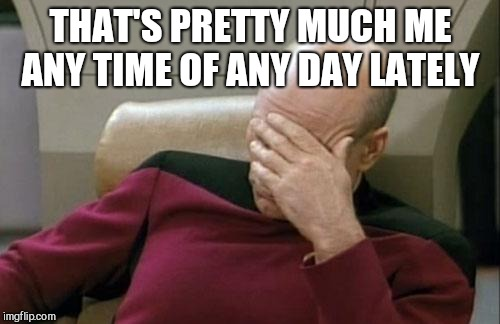 Captain Picard Facepalm Meme | THAT'S PRETTY MUCH ME ANY TIME OF ANY DAY LATELY | image tagged in memes,captain picard facepalm | made w/ Imgflip meme maker