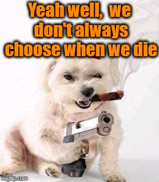 Dog with gun | Yeah well,  we don't always choose when we die | image tagged in dog with gun | made w/ Imgflip meme maker