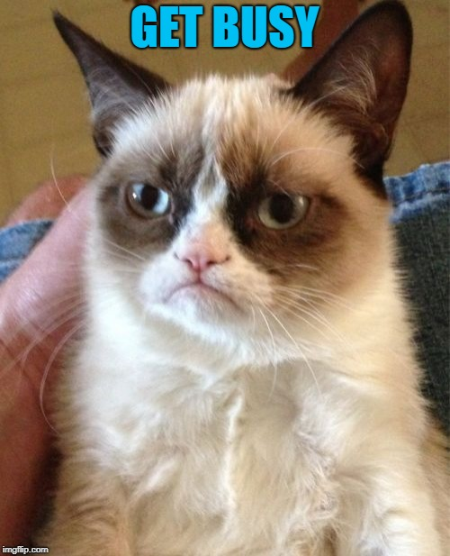 Grumpy Cat Meme | GET BUSY | image tagged in memes,grumpy cat | made w/ Imgflip meme maker