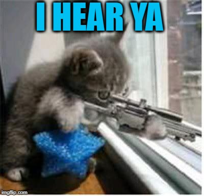 cats with guns | I HEAR YA | image tagged in cats with guns | made w/ Imgflip meme maker