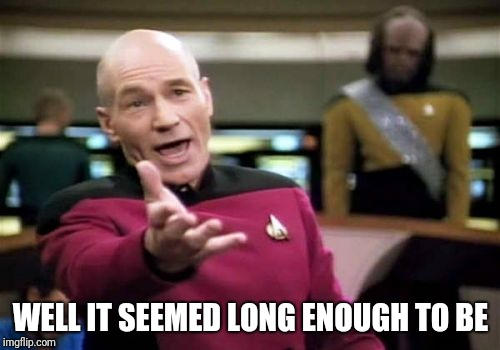 Picard Wtf Meme | WELL IT SEEMED LONG ENOUGH TO BE | image tagged in memes,picard wtf | made w/ Imgflip meme maker