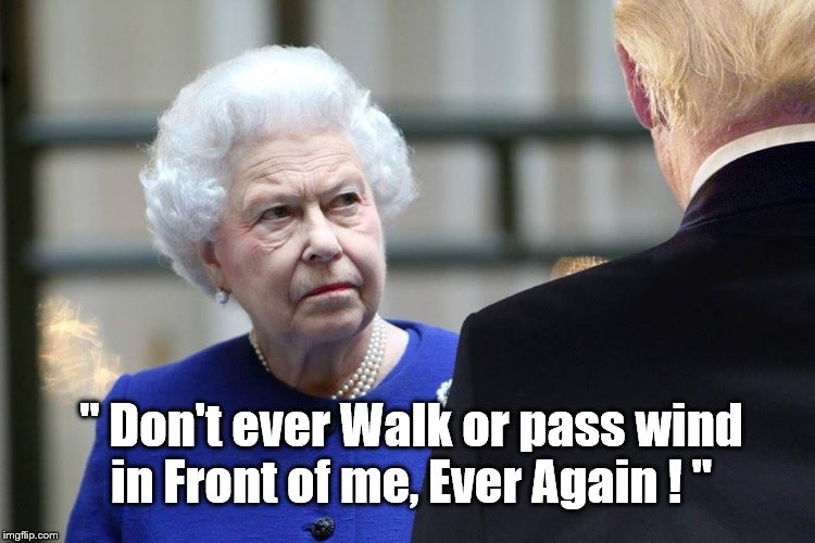 "Queen reigns over Doofus |  "" Don't ever Walk or pass wind in Front of me, Ever Again ! "" 