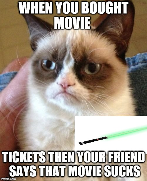 Grumpy Cat Meme | WHEN YOU BOUGHT MOVIE TICKETS THEN YOUR FRIEND SAYS THAT MOVIE SUCKS | image tagged in memes,grumpy cat | made w/ Imgflip meme maker